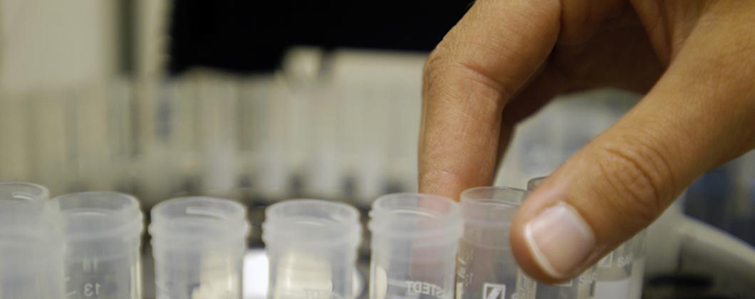 Person moving test tubes that contain dangerous substances.